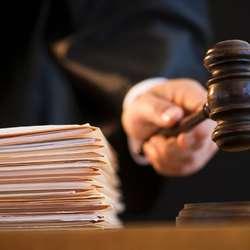 apelacioni-sud-potvrdio-aljbinu-kurtiju-17-meseci-zatvora