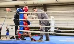 bokser-iz-zvecana-nastavlja-da-nize-uspehe