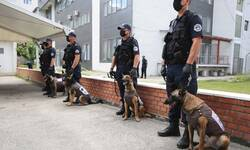 k9-jedinici-kosovske-policije-pet-pasa-za-otkrivanje-oruzja