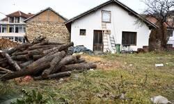 za-83-ugrozene-porodice-250-kubika-drveta-za-ogrev