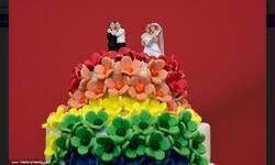 u-crnoj-gori-sklopljen-prvi-gej-brak